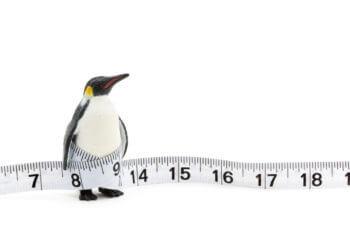 レンタルする前に 今の自分のサイズをcheck!